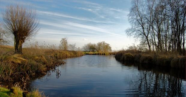 varen in de biesbosch drimmelen