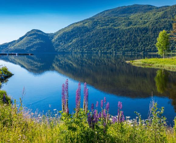 Zuid-Noorwegen meer