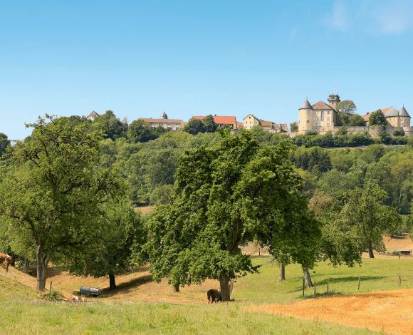 Baden-Württemberg_Waldenburg