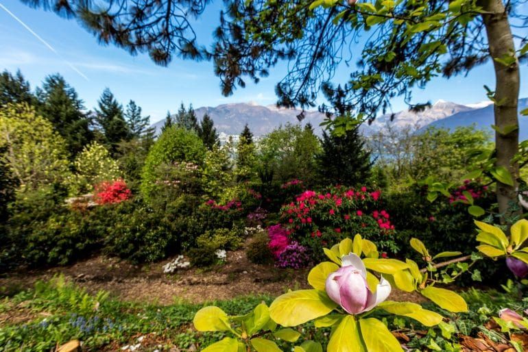 Ticino_botanische tuin