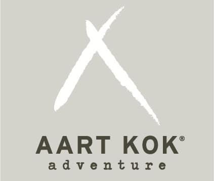 Aart Kok Logo CMYK 02 grijs vlak