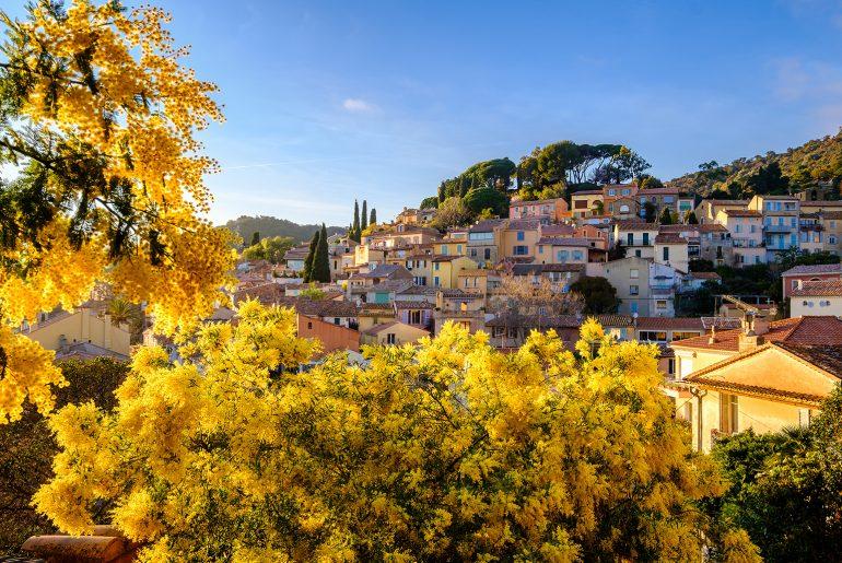 Frankrijk_Provence_Bormes-les-Mimosas