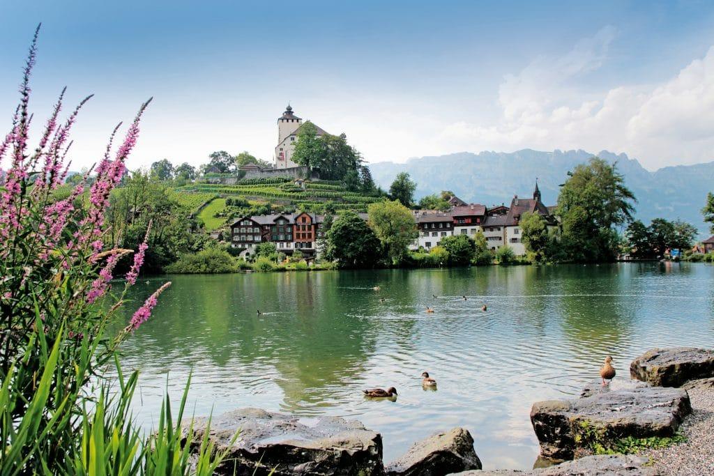 Rijn_Alpenrijndal_Werdenberg